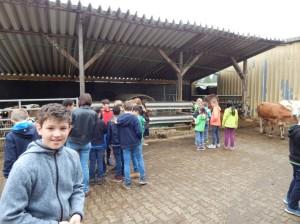 Ausfkug der Klassen auf den Bauernhof